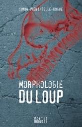 Morphologie du loup